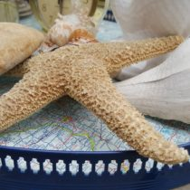 waste-not-wednesday-week-17-nautical-map-tray-from-denise-at-my-thrifty-house