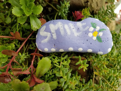 Smile Kindess Rock in the succulents