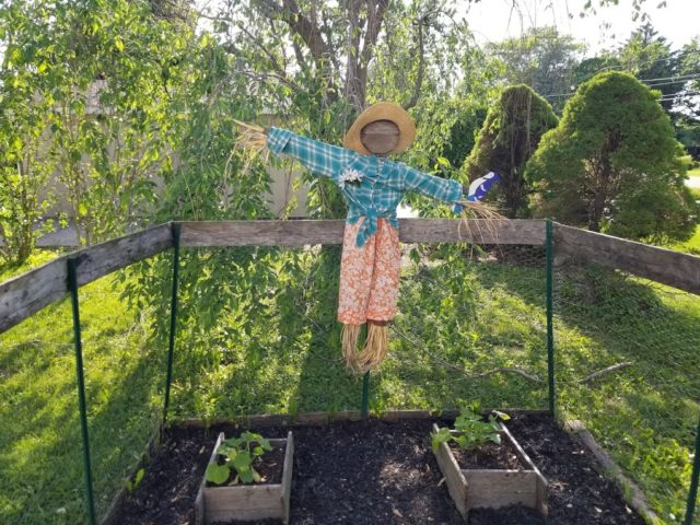 Cute garden scarecrow in the garden